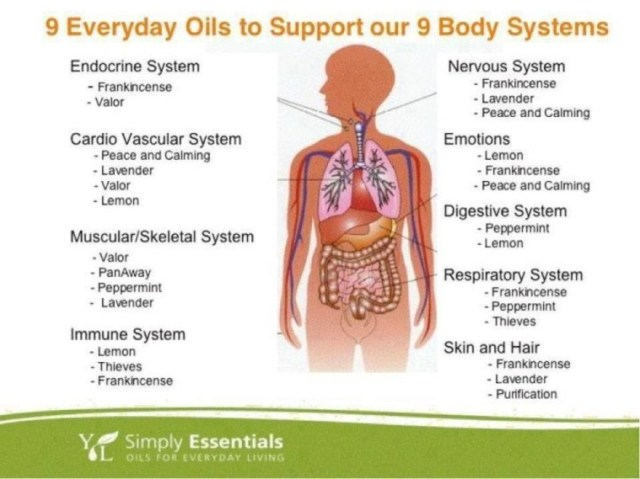 9_everyday_oils_chart