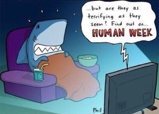 shark-week-humans