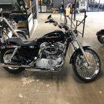 2006 Harley Davidson Sportster 883 American Motorcycle Trading Company Used Harley Davidson Motorcycles