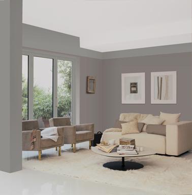 peinture gris taupe pour le salon