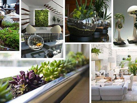 mini indoor garten indoor gardening ideas to beautify your space