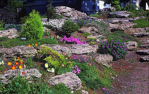 Pictures Rock Gardens