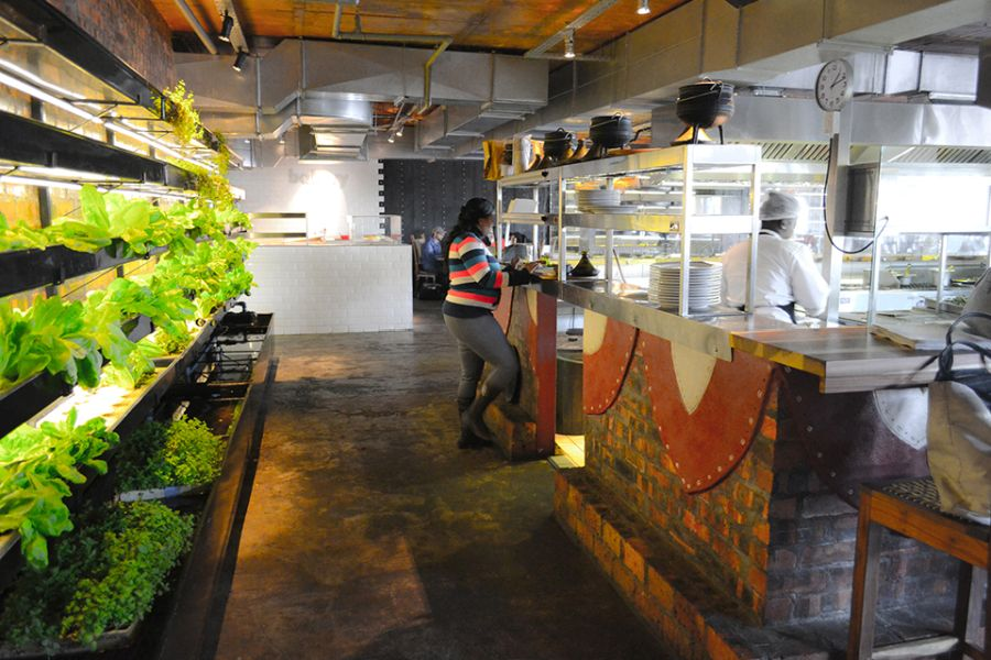 Moyo Restaurant Sustainable Agriculture Meets Modern Architecture