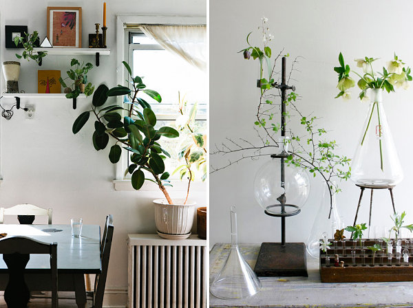 20 Unforgettable Indoor Plant Displays   Ideas View in gallery Artful displays of indoor plants