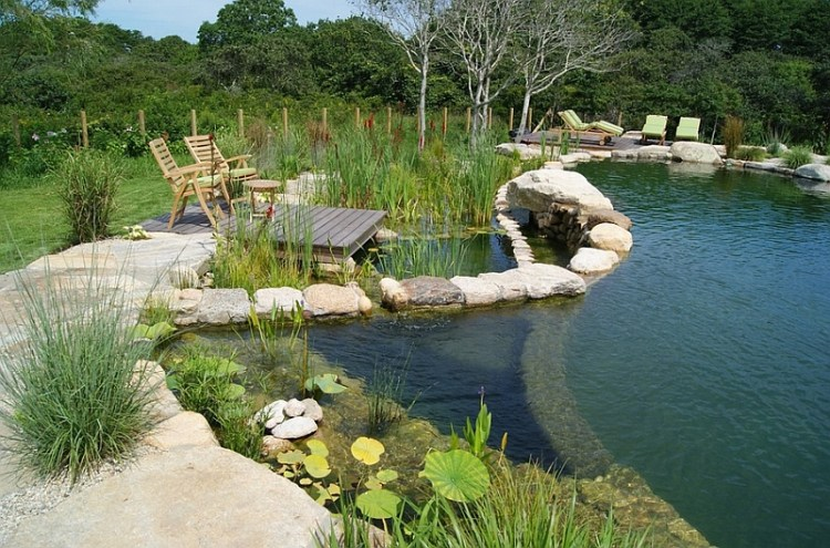 Enjoy a serene evening on the edge of the beautiful natural pool