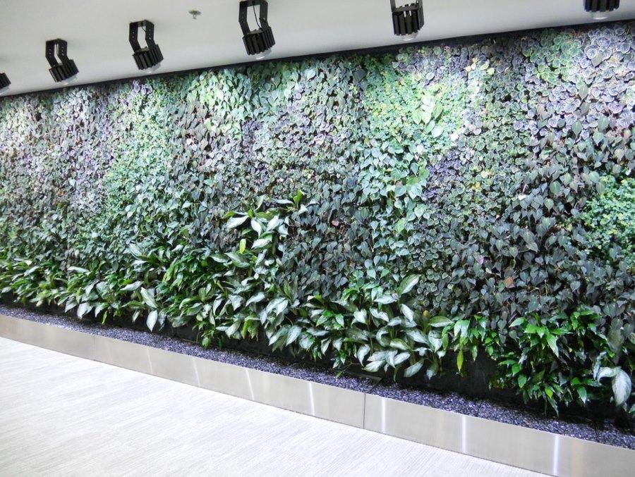 Kitchen Wall Herb Garden