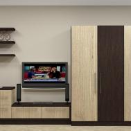 100 Best Unit Designs India Wall