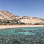100 Orchid Reef Hotel Eilat Best Price Dan