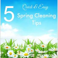 100 Spring Cleaning Eco Friendly