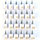 Advent Calendar Boxes Diy Giving Christmas Make