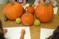 Artists Kids Pumpkin Still Life
