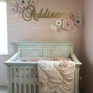 Awesome Baby Bedroom Themes Maverick Mustang