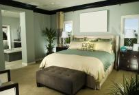Bedroom Decorating Ideas Accent Wall Home Delightful