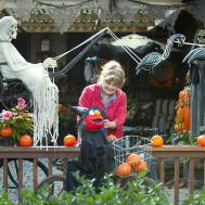 Best Ideas Halloween Decorations Yard Easy Tips