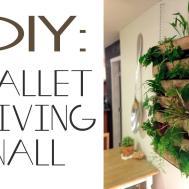 Brew Diy Pallet Living Wall