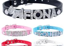 Buy Wholesale Diy Dog Collar China