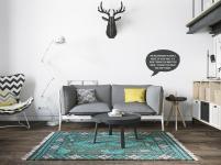 Chic Scandinavian Studio Apartment Design Arranged