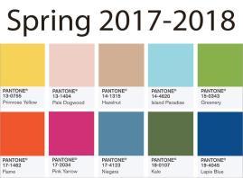 Color Trends Spring 2017 2018 Back Brain