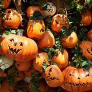 Cool Pumpkin Display Camp Spooky Area