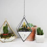 Creating Diy Hanging Terrarium Easy Result