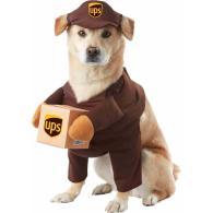 Creative Costumes Dogs Nobiggie