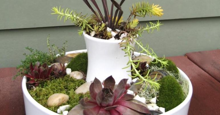Cup Sparkle Handmade Modern Succulent Planter Tutorial