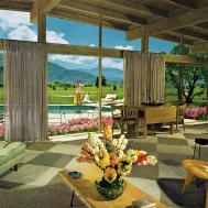 Decor Mid Century Modern Architecture Design Ideas