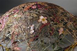 Delicate Vessels Sculpted Pressed Flowers Ignacio