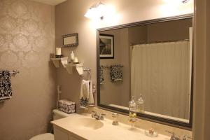 Delightful Large Framed Bathroom Mirrors