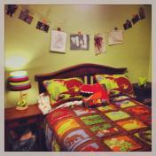 Dinosaur Themed Bedroom Accessories Fresh