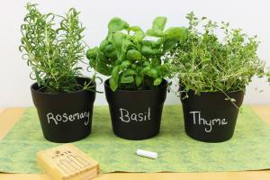Diy Chalkboard Paint Herb Pots Shelley Makes