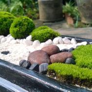 Diy Japanese Garden Lovely Interesting