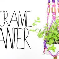 Diy Macrame Planter Threadbanger