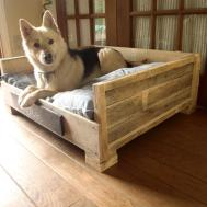 Diy Pallet Dog Bed Ideas Don Know Which Love