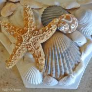Diy Seashell Mirror Puddy House