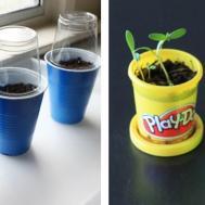 Diy Seed Starter Your Self