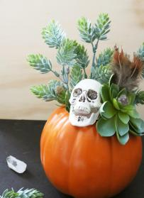 Diy Skull Succulent Pumpkin Centerpiece