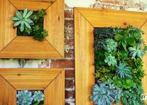 Diy Vertical Succulent Garden