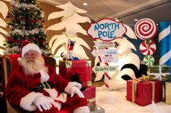 Don Forget Stop Eat Roses Pics Santa