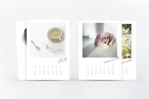 Dream Create Diy 2015 Instagram Calendar