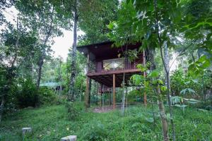 Eco Friendly Tree House Treehouses Rent Kumily