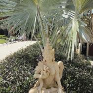 Exotic Tropical Decor Lifestyle Blog Women