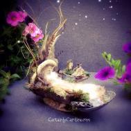 Fairy Beds Certainly Caroline