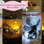 Fairy Lantern Cinderella Captured