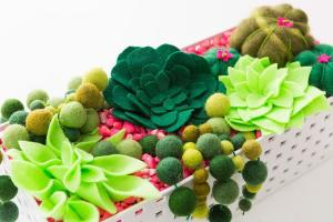 Felt Create Succulent Planter Box Never