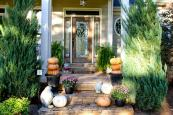 Front Porch Decorating Ideas Your Home