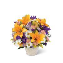 Ftd Natural Wonders Bouquet Brampton Florist