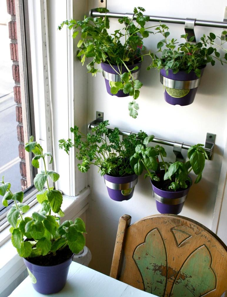 Good Life Diy Herb Wall Kitchen
