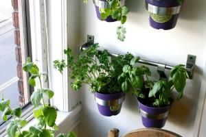 Good Life Diy Herb Wall Kitchen