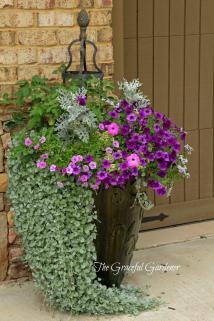 Graceful Gardener Summertime Garden
